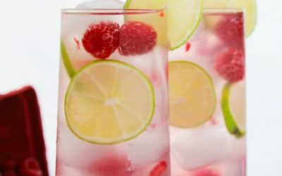 Raspberry and Lime Gin Crush