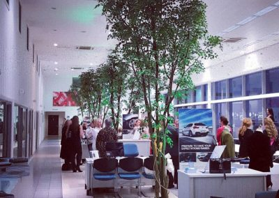Summer event in Car Showroom